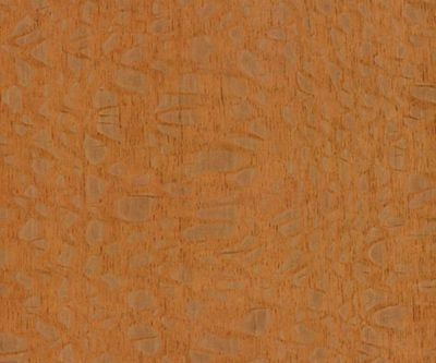 FSC-Silky-Oak_veneer_from_Shadbolt