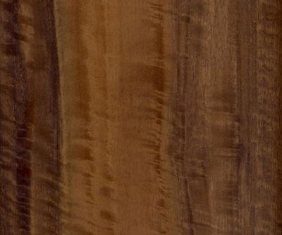 FSC-Smoked-Eucalyptus_veneer_from_Shadbolt