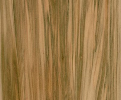 FSC-Straight-Grain-Satin-Walnut_veneer_from_Shadbolt