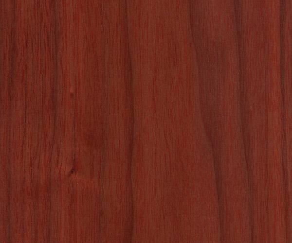 Shadbolt veneer stain 450 CC ABW 20%